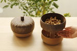 Acorn snack bowl by Qualy